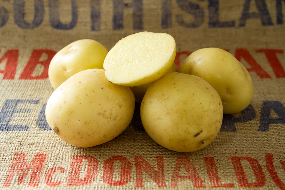 Carrera potato variety