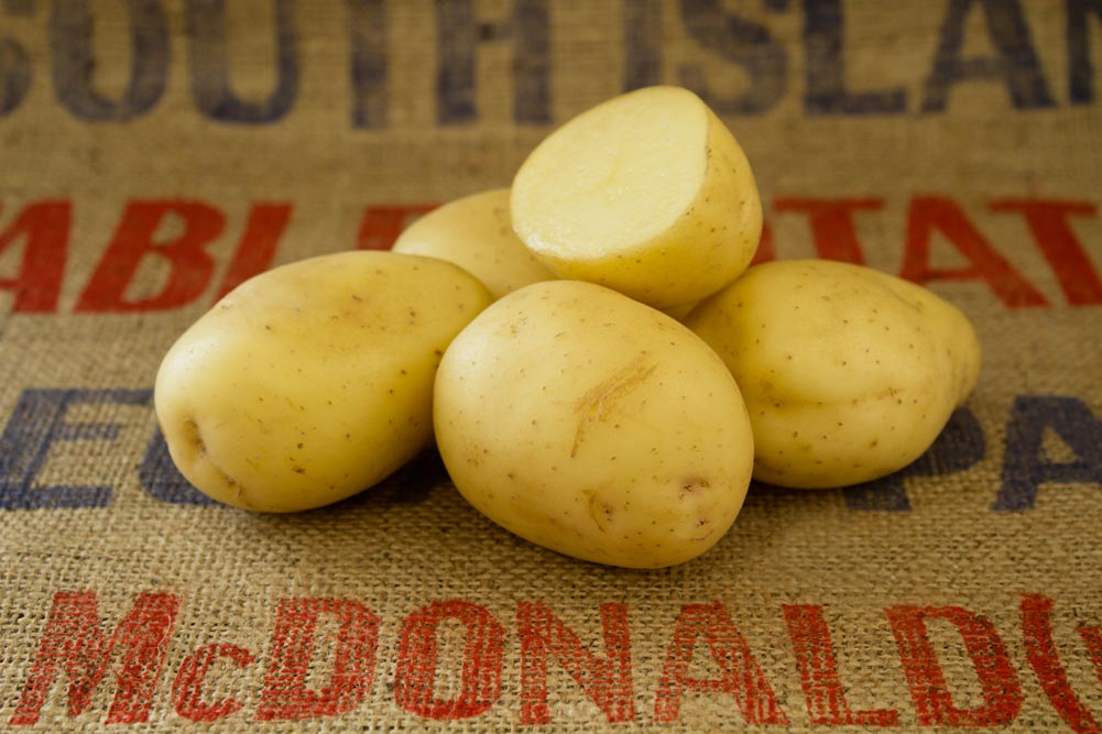 Compass potato variety