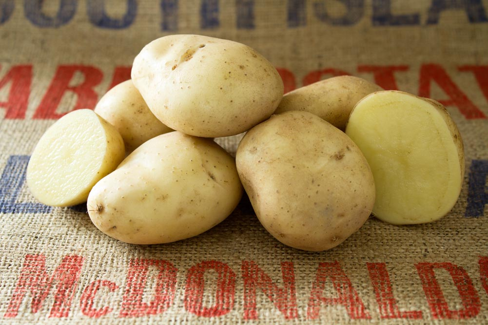 Crisp 4 all potato variety