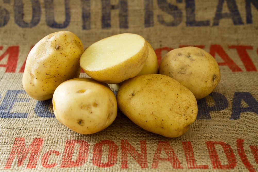 Figaro potato variety