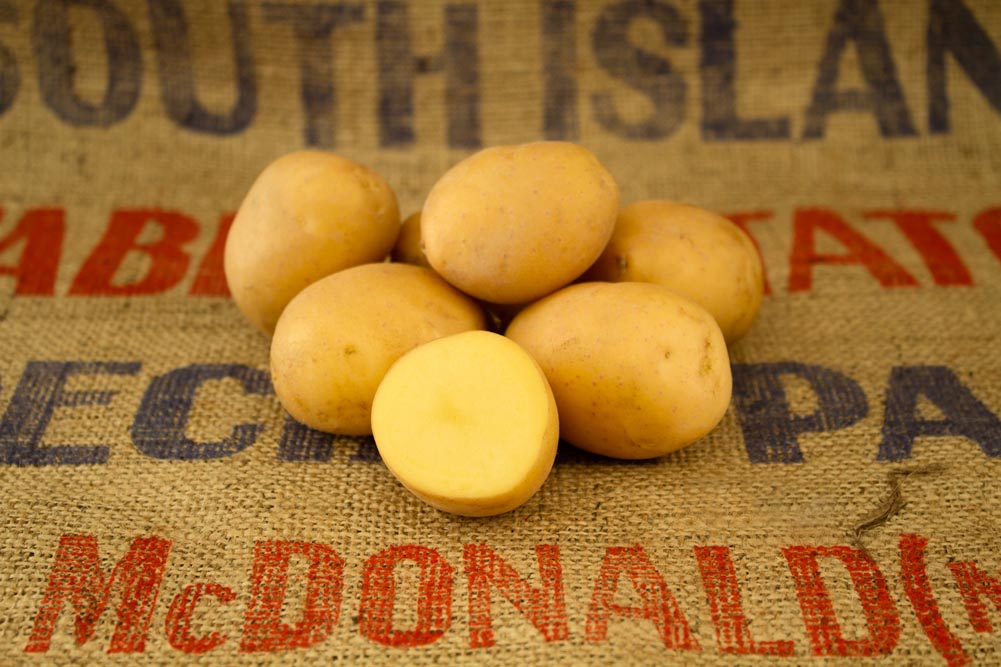 Golden Nugget potato variety