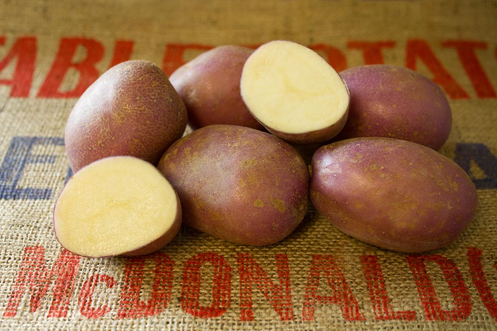 Heather potato variety