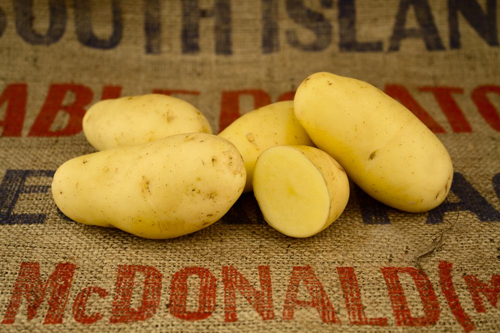 Marilyn potato variety