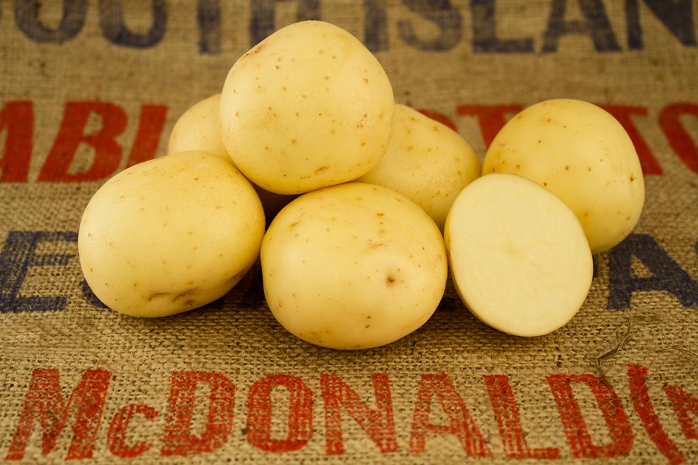 Nadine potato variety