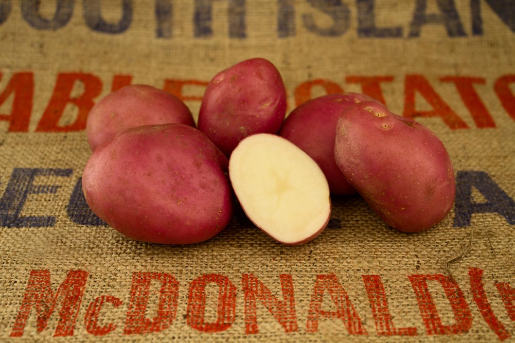 Red Rascal potato variety